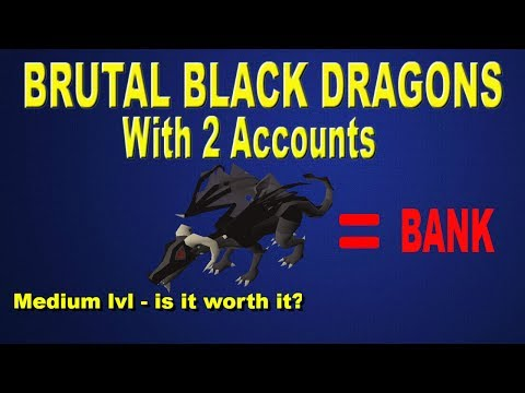 OSRS - Brutal Black Dragons 500K an hour (with two accounts) Money Making Guide